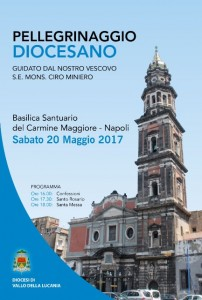 Pell. Diocesano 2017 (1)